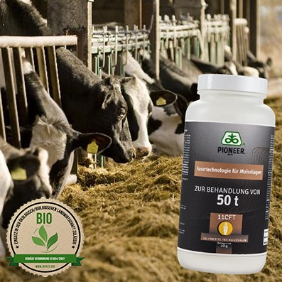 PIONEER® 11CFT Corteva Agriscience Germany GmbH