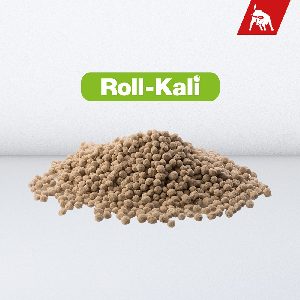 Roll-Kali K+S Minerals and Agriculture GmbH