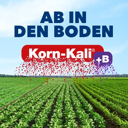 Korn-Kali® + B K+S Minerals and Agriculture GmbH