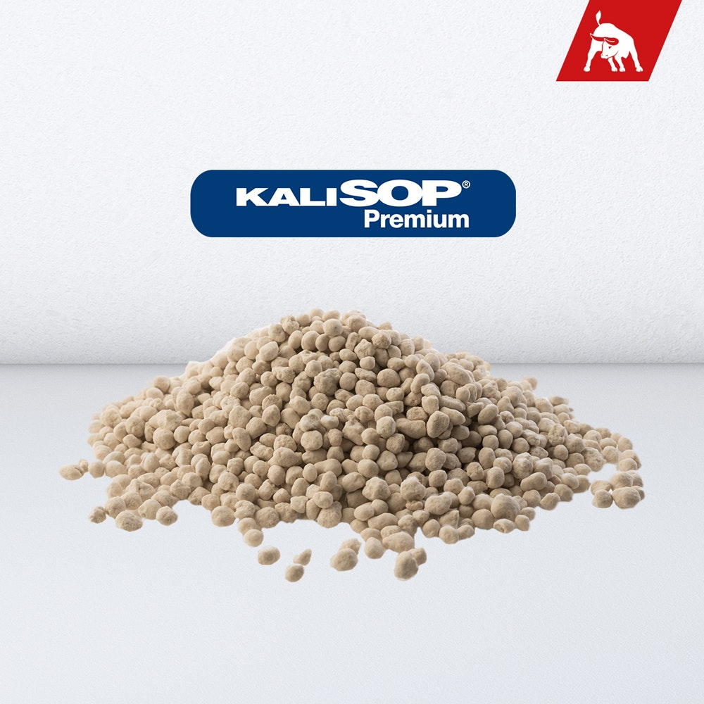 KALISOP® Premium K+S Minerals and Agriculture GmbH